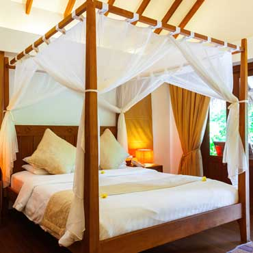 Bed Canopies
