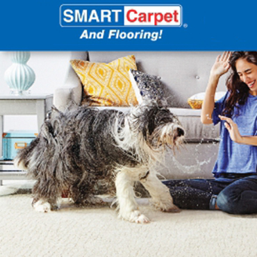 Making Spirits Bright This Year: Waterproof Indoor Carpet at SMART Carpet and Flooring