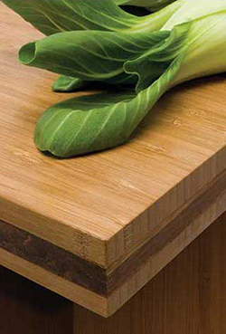 Teragren Bamboo Surfaces - Countertop and Surfaces