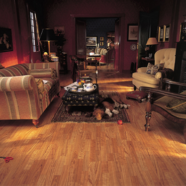 Alloc Laminate Flooring a laminate flooring collection with natural and fresh colours Call