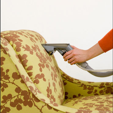 expert upholstery  cleaning & protection