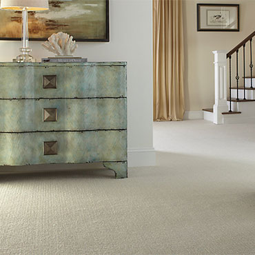Wool Carpets: The Best Carpets for Allergies